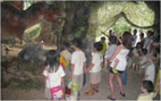 """""""Roar!"""" says T-Rex! As everyone observes T-Rex's body characteristics and movements."""