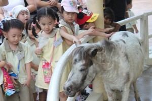 Melody stroking the little pony gently