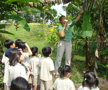We have learnt so much about various plants today!